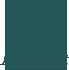 logo_lightweight